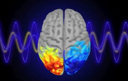 Ny forskning: Vi kan lære at styre vores alfa-hjernebølger og forbedre vores koncentration