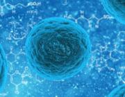 Kunstig intelligens opfinder nyt kraftfuldt antibiotika mod resistente bakterier