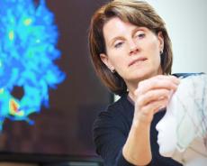 Ny hjerneforskning: Din hjerne og person kan udvikle sig markant som voksen