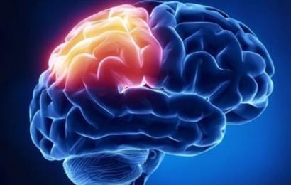 Magt og penge ændrer din hjerne