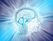 Snyd din hjerne klog: Hvordan du bliver den bedste version af dig selv