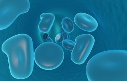 Medicinsk gennembrud: Canadiske forskere med en mulig kur mod diabetes