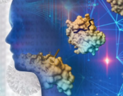 Særlige kostvaner hænger sammen med bedre funktion af hjernen viser nyt studie