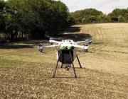 Droner planter 400.000 træer om dagen og målet er meget større