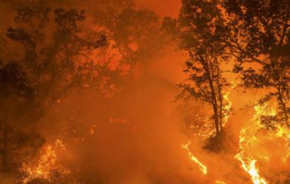 Klimakrisen er vores generationers 2. verdenskrig og kalder nu på alles mod og handling