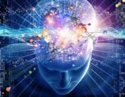 Hyper hjerne, hyper krop: Problemet med en høj IQ