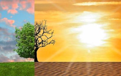 De 6 mest effektive personlige klimatiltag – hvad du selv kan gøre ved klimakrisen