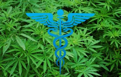 Ny forskning: I stater hvor cannabis er gjort lovligt falder salget af receptmedicin og relaterede dødsfald