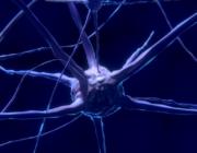 Ny forskning: Kort motion giver dig en klogere hjerne