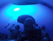 Dybhavet har uanede fiskebestande og er måske løsningen på klimakrisen