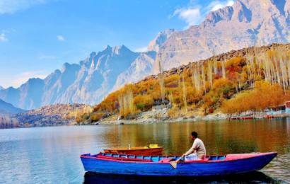 Pakistan planter 10 milliarder træer ved at ansætte pandemiens arbejdsløse
