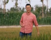 Ny type ris kan gro i havvand – det kunne løse et meget stort problem