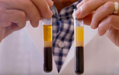 Ny højprofileret Netflix-dokumentar vil ændre dine kostvaner og booste dit helbred
