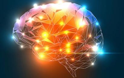 Træn din hjerne knivskarp – dansk hjerneforsker viser vejen