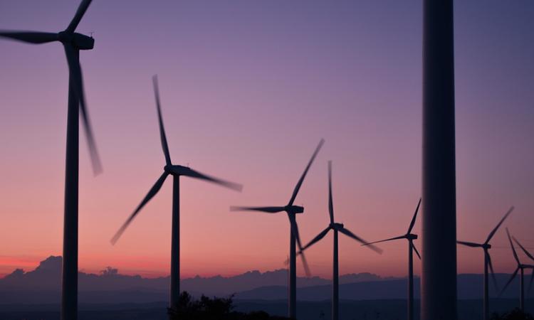 Har Danmark næsten ubemærket fået verdens stærkeste klimalov?